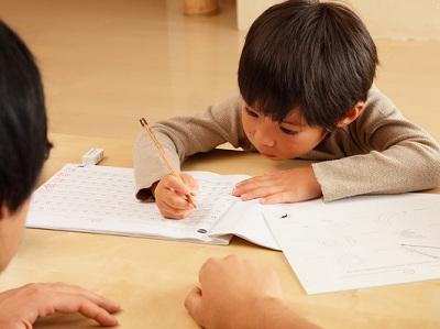 家庭教育 >父母易忽视的早教误区