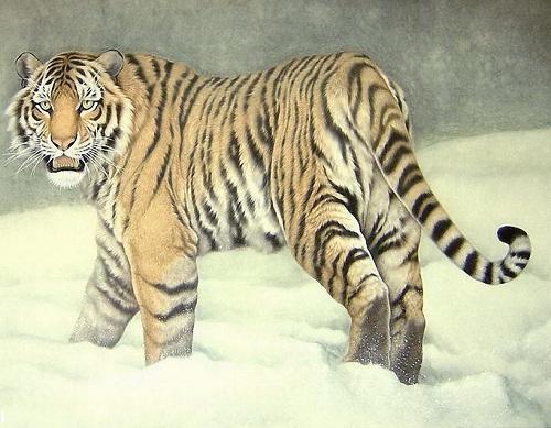 古代传说动物图片